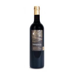 Vallformosa Col·lecció Brut Pinot Noir 2012