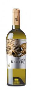 Tianna Bocchoris Blanc