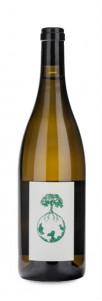Werlitsch Vom Opok Sauvignon Blanc