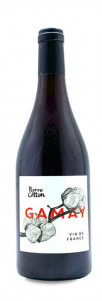 Pierre Cotton Gamay