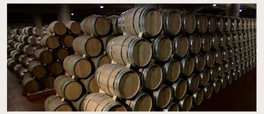 Vinos Protos - sala barricas