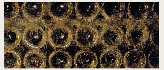 botellas tondonia