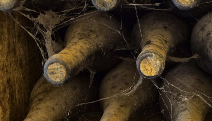 MicroBio Wines