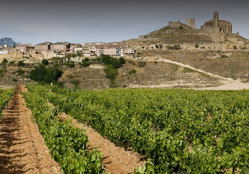 Wine by the winery Contador  | DECÁNTALO