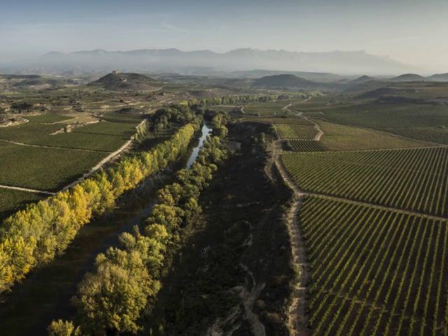 D.O.Ca. Rioja