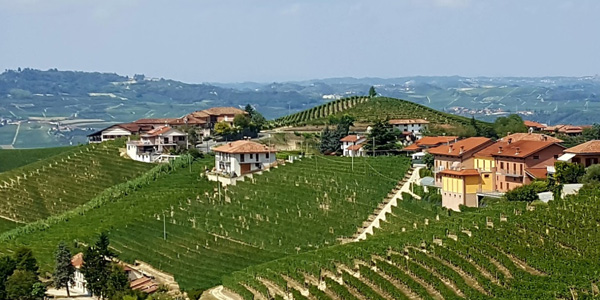 DOCG Barbaresco