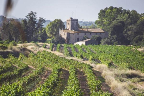 D.O. Tarragona