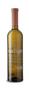 Caligo Vi de Boira