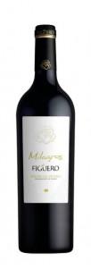 Milagros de Figuero